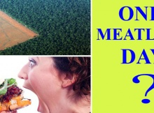 90 million airplane tickets = 1 meatless day?