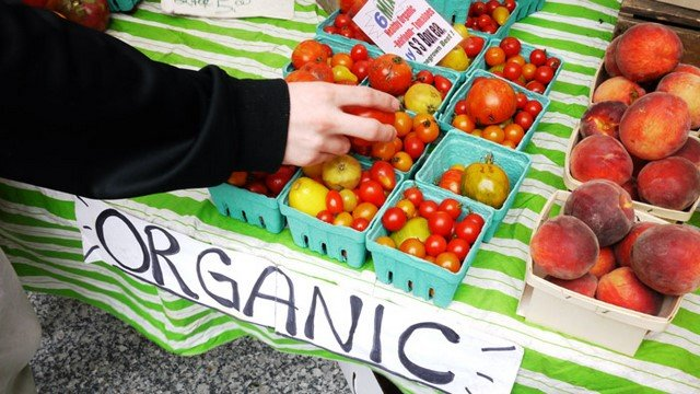 8 Awesome Vegan Shopping Tips You Need Yesterday