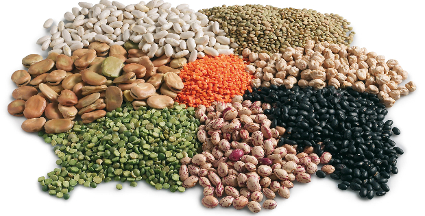Debunking The Plant Protein Combining Myth