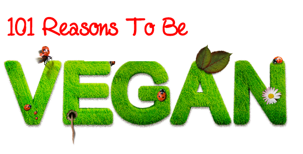 101 Reasons To Be Vegan (Vegan Or Not - This List Is For You!)
