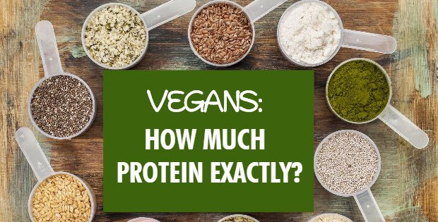 Truth Be Told: How Much Protein EXACTLY For Vegans? The Point On Protein Supplements and A Few Deciding Factors No One Talks About!