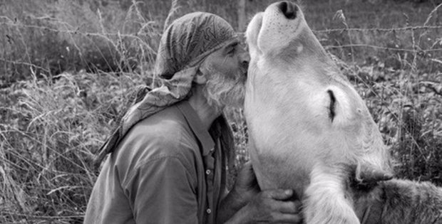 9 ways showing compassion for animals improves your health