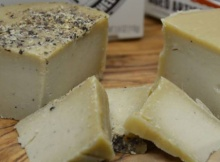 Artisanal Vegan Cheese Goes Mainstream This September