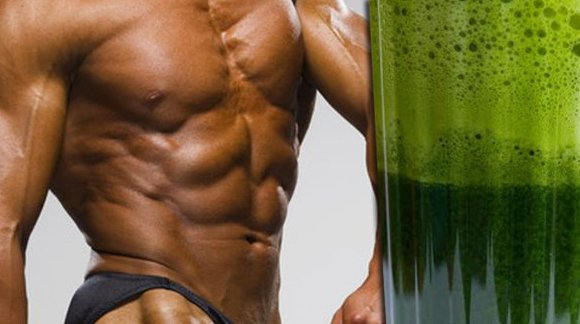 Does Vegan Protein Build Muscles Better Than Meat? Massive New Study Finally Gives Scientific Proof!