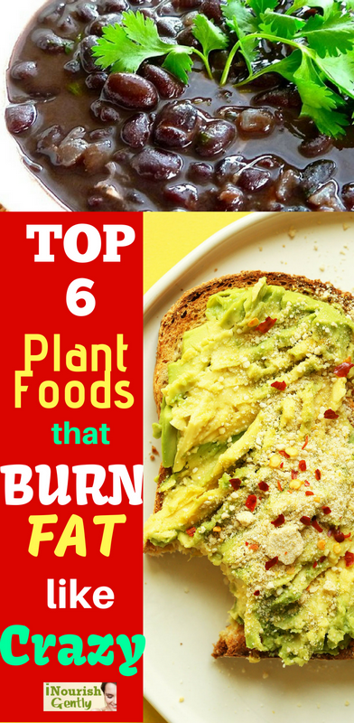 fat burning plant foods