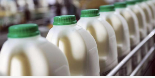 This 90 Year Old Dairy Company Ditched Tradition To Become Vegan Instead!