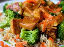 Sticky Spicy Stir Fried Tofu in Ginger Sauce