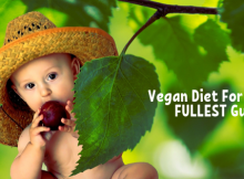 vegan diet for babies