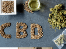 cbd bioavailability