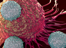 immune system dangers during covid-19
