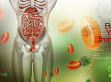 nutrient absorption and immunity