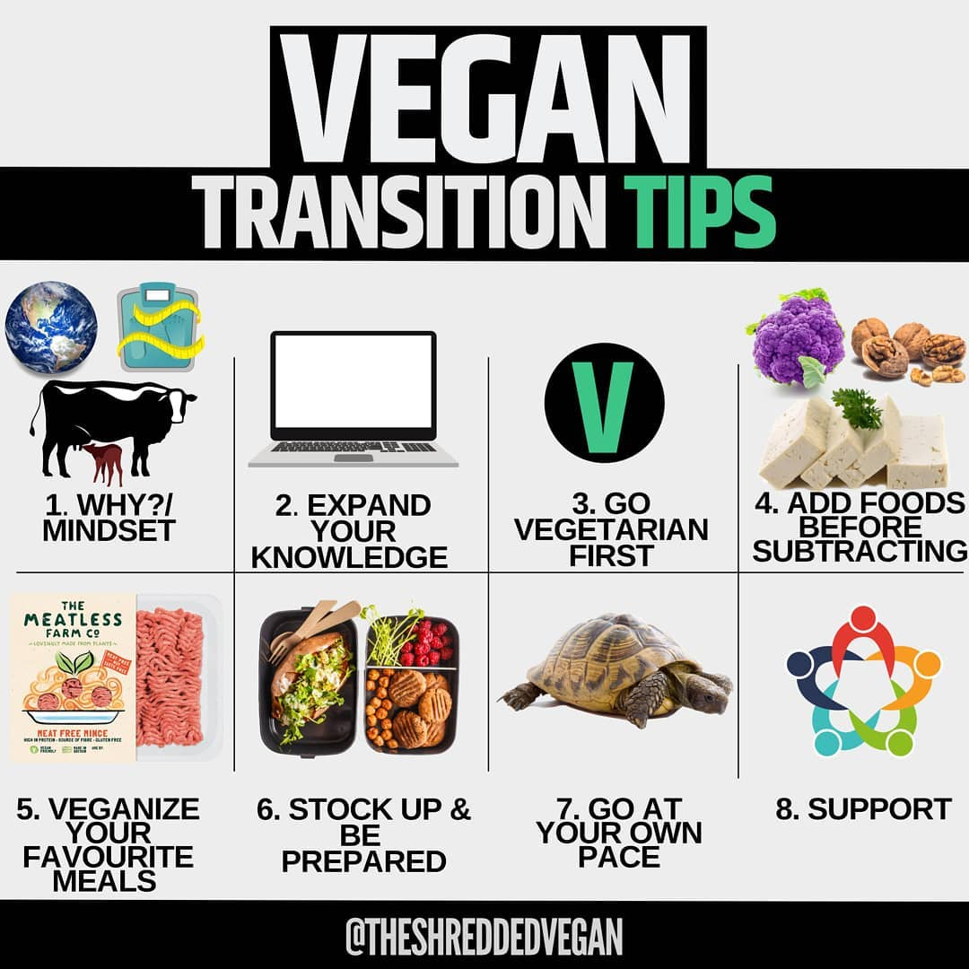 how to go vegan charts